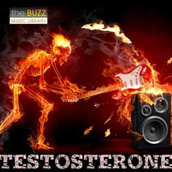 Album: Testosterone
